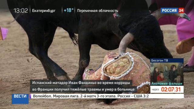 Новости на Россия 24 • Во Франции скончался испанский матадор, которого ранил бык
