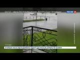 Тайфун «Джеби» ослабевает, но захватит север Хабаровского края