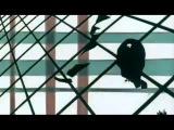 FaltyDL - Hip Love (Jamie xx Remix)