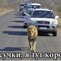 Мага Гаджиев, 26 мая 1998, Ульяновск, id212321802