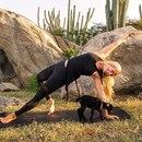 Вероятно, вы уже слышали о Рэйчел Бразен( @ yoga_girl) — фанатке йоги…