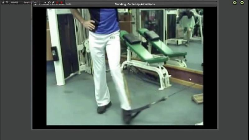 Приводящие мышцы бедра -- Анатомия, Упражнения
