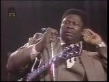 B.B.KING LIVE 1980 MONTREAL Jazz Festival
