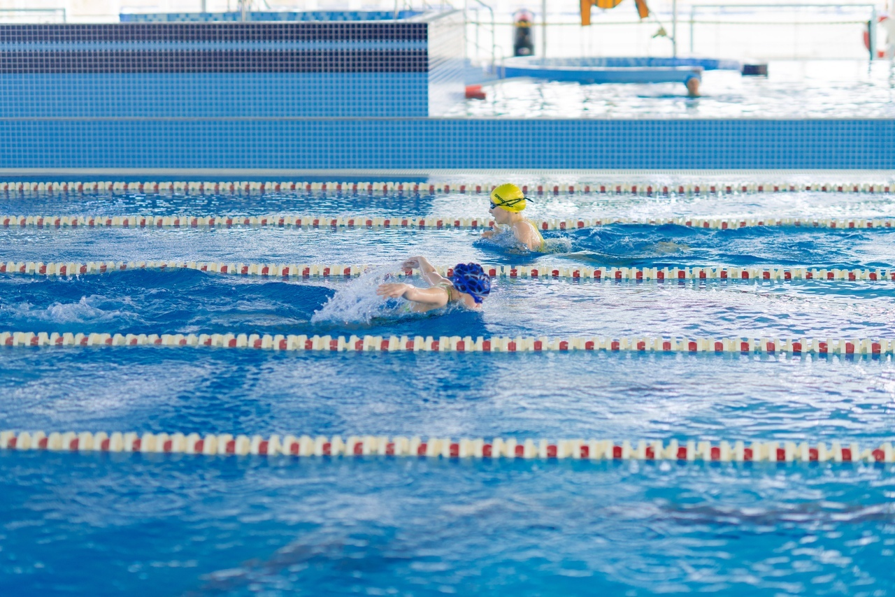 Сборная команда города Донецка приняла участие в первенстве Республики Крым по плаванию