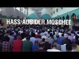 Hass aus der Moschee - Ismail Tipi ZDF Zoom - Islamrepotage #bunt UN Migrationspakt