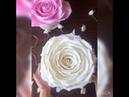 Ваза-конфетница Роза из изолона