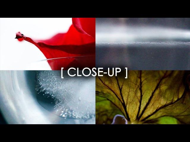CLOSE UP A mini film by Sasha :)