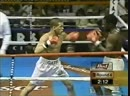 Arturo Gatti vs Calvin Grove