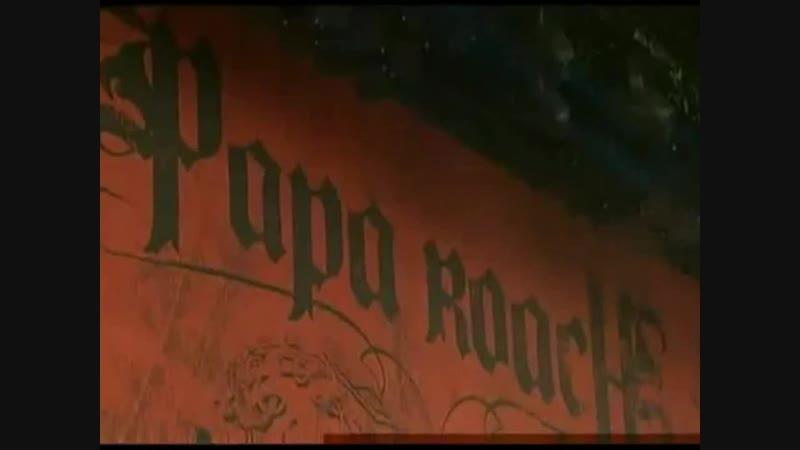 PAPA ROACH LIVE GRASPOP FESTIVAL 2009 полный концерт