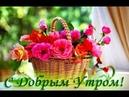Доброе утро! С добрым утром и хорошим днем!! Позитив на весь день! Прикольное пожелание!