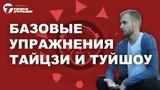 Базовые упражнения тайцзи и туйшоу от мастера Антона Антонова