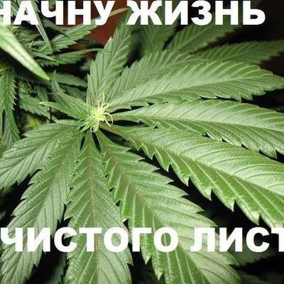 Ольга Саликова, 14 ноября , Всеволожск, id192616213