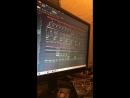 Dub Teddy — Live