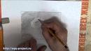 Гербера Первый Этап Рисунок