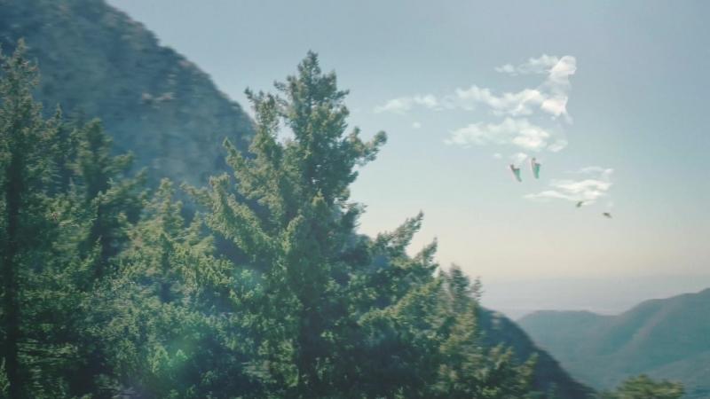 Hoka.One.One_Cloud.Runners_8v5_Forest