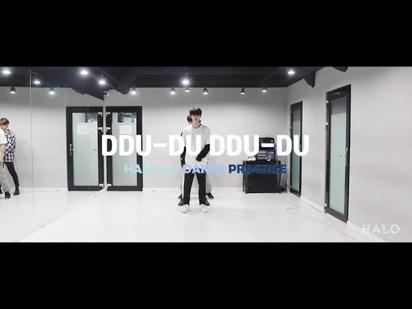 헤일로(HALO) 뚜두 뚜두(DDU-DU DDU-DU) DANCE PRACTICE
