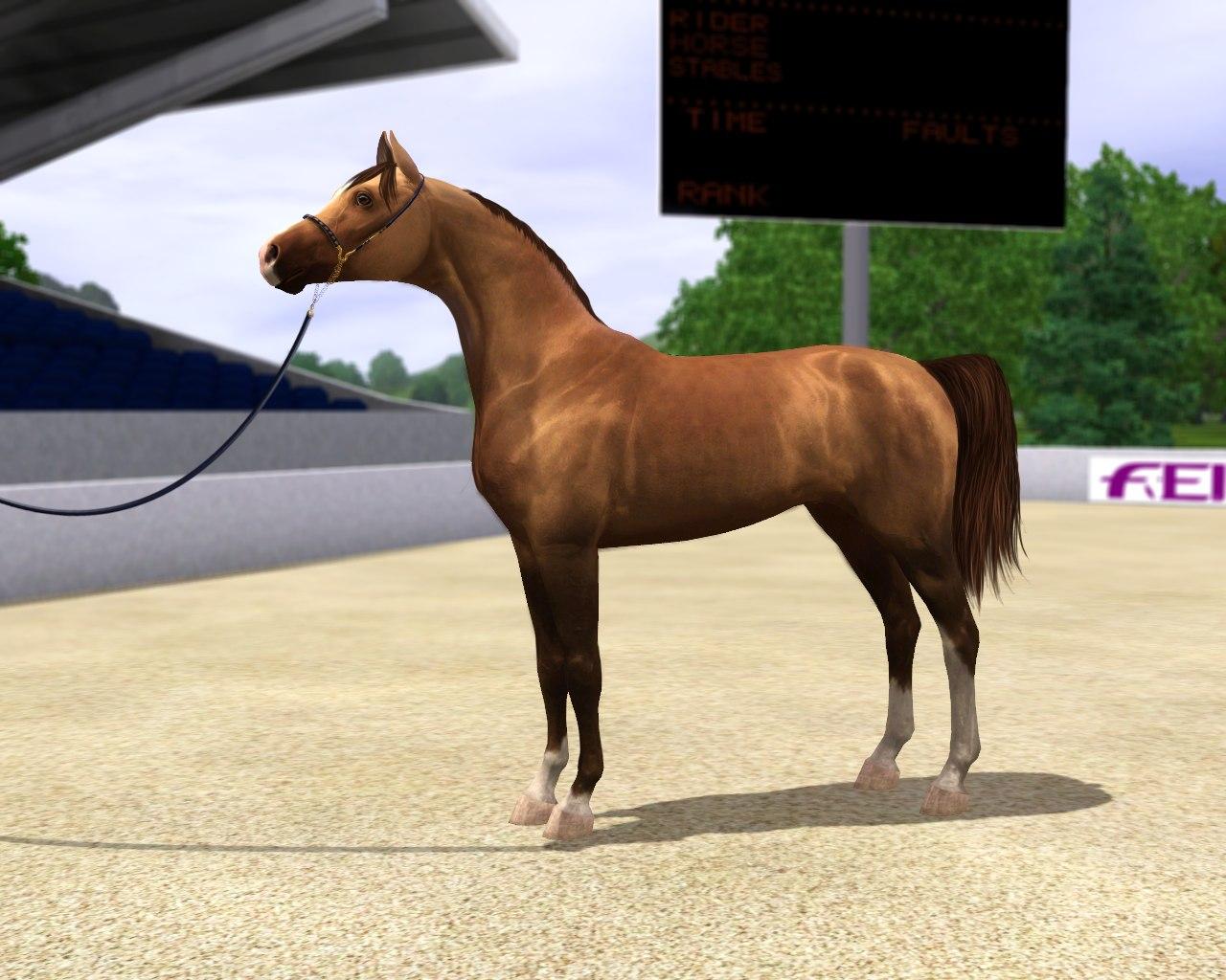 Регистрация лошадей в RHF 1.2 6PseGOZYkW0
