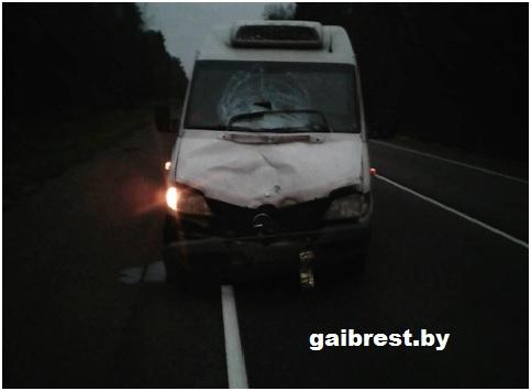Водитель высадил пассажиров на трассе. Появились подробности смертельного наезда на М10