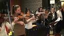 Slatke violinistkinje