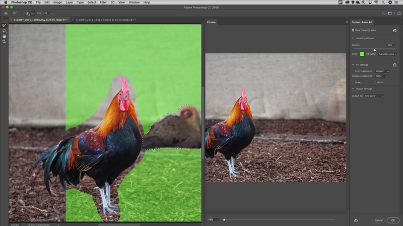 New Features for Photoshop's Content-Aware Fill