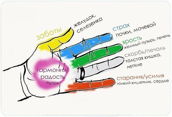 Фото №456254974 со страницы Надежды Самсоненко