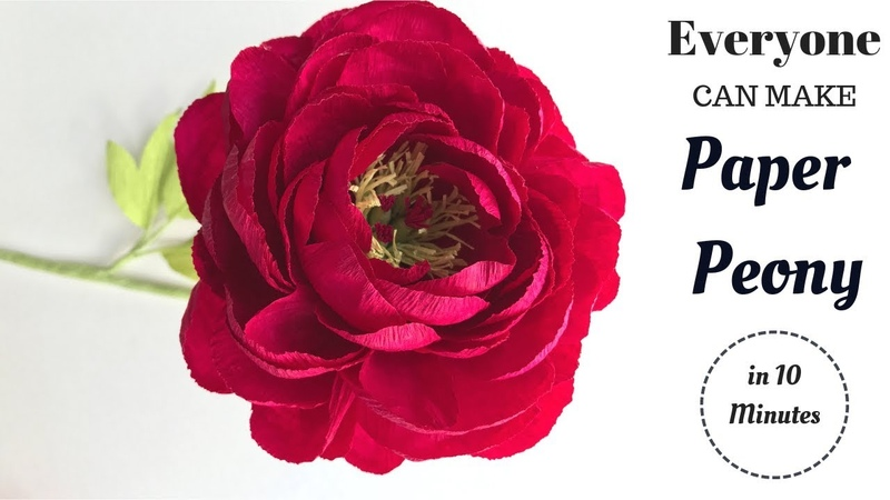 Crepe paper flowers How to make paper Peony flower from crepe paper flowers kit