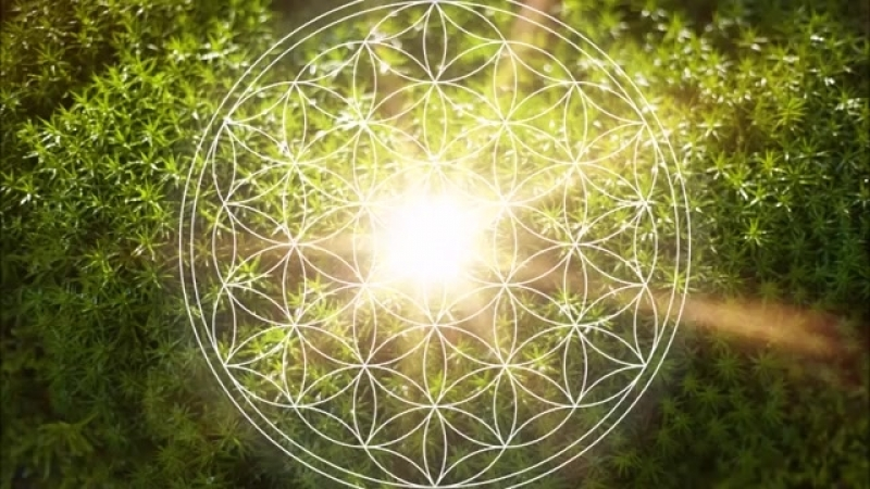 528 Hz Heart Chakra Regeneration _ Repair Heal The Heart Chakra _ Open Balan