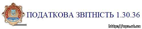 бланк форма 13001 2013 скачать 2