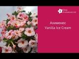 Ахименес Vanilla Ice Cream (Вэнилэ Айс Крим)