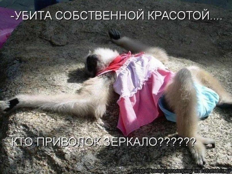 Юлия Дубиновская |