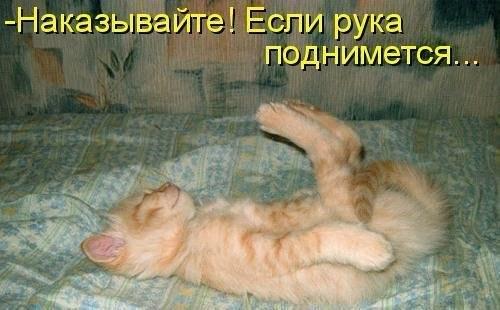 http://cs315428.userapi.com/v315428244/196d/DrjCQZXoUug.jpg