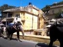 По улицам слона водили - vk/puti_indostana