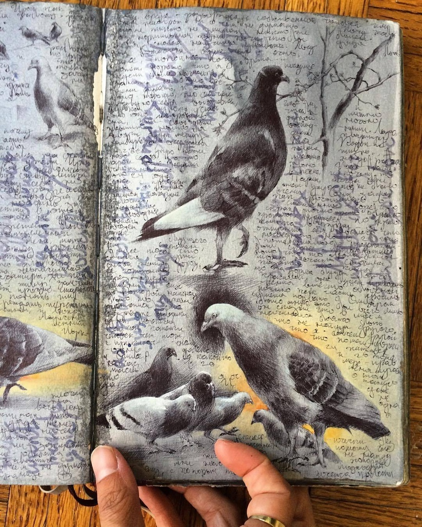Dina Brodsky sketchbooks