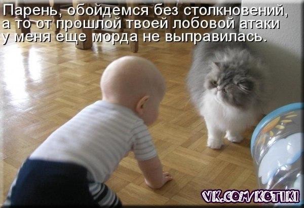 http://cs413823.vk.me/v413823283/daf/sfYdeUV45ao.jpg