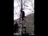 Человек паук атакует дерево