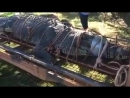 Weve never seen one this big Rangers in the Northern Territory capture crocodile weighing a whopping 600kg after decade-long hun