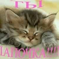 Наталья Нечет, 21 сентября , Челябинск, id87987222
