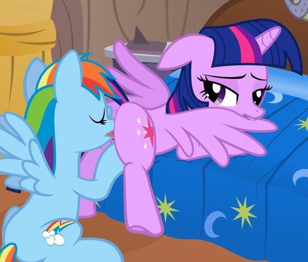 сношение с пони