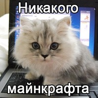 Арсений Сергеев, 25 января 1998, Санкт-Петербург, id162694748