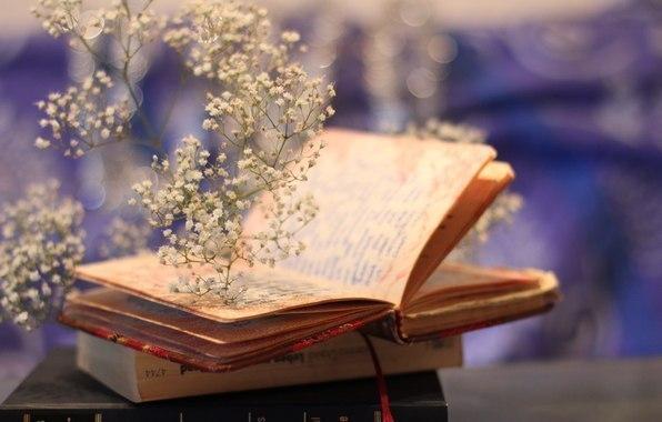 Замечательные отрывки из книг, меняющие отношение к жизни. Обязательно послушайт...