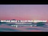 Skyline Drive Allay feat. Astroleaf - Ocean Boulevard Silk Music