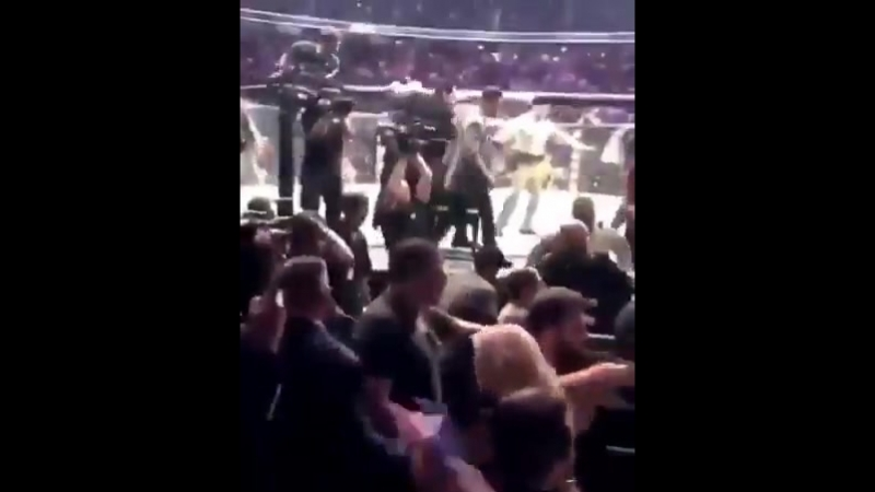 This is a crazy finish to ufc ufc229 by khabib nurmagamedov vs conormcgregor in lasvegas.mp4