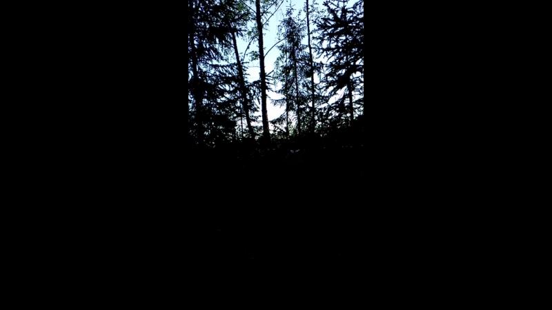 Финляндия Ночевка в палатке