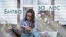 БИТВА ЗА ЛЕС / КОТЫ-ВОИТЕЛИ CrazyTulipkin