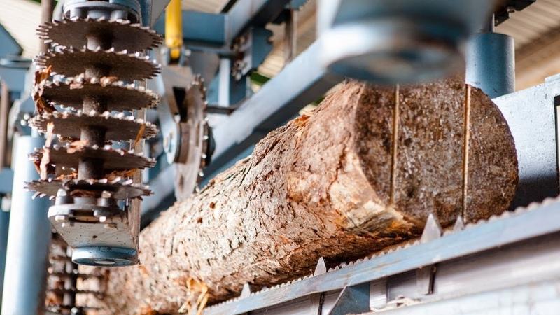 看完德國的木材加工過程,才知道有多霸氣!這點不能不服
