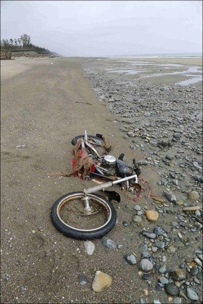 Необычное путешествие мотоцикла Harley Davidson