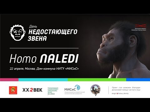 Homo naledi. День недостающего звена