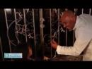 [v-s.mobi]Папа с дочкой поют на арабском очень красивую песню.  Ramadan .mp4