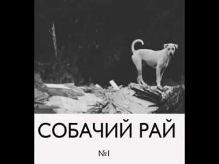 Собачий Рай - Алкоголичка (русский панк-рок)