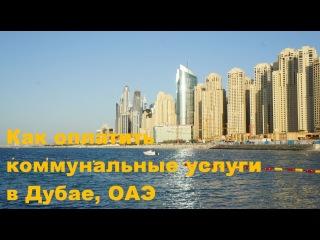 Как оплатить коммунальные услуги в Дубае, Arab Emirates